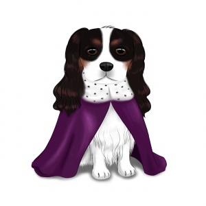 Cavalier King Charles Spaniel in a Cloak