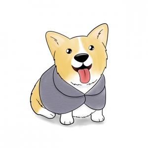Corgi in a cape