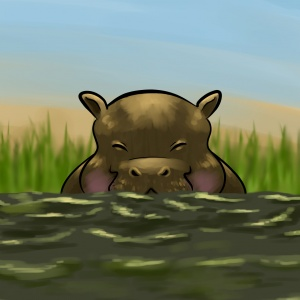 Hippo children's illustration