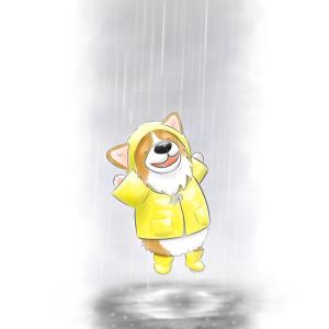 Corgi singin in the rain