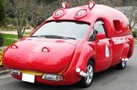 hippo car