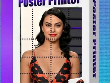 RonyaSoft Poster Printer Key Crack