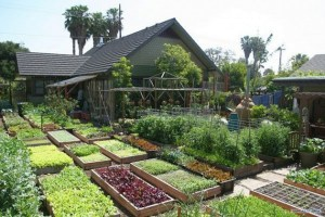 PermaCulture Farm