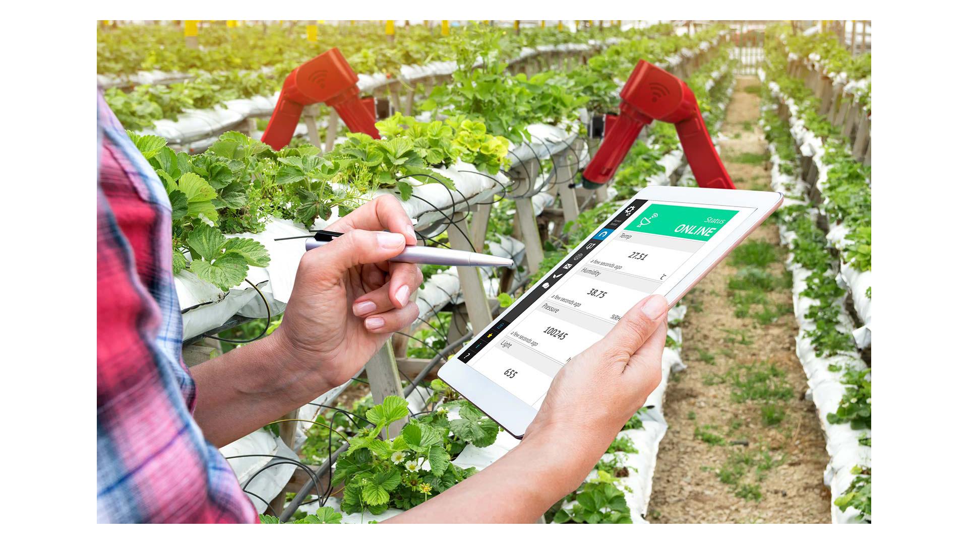 IoTs Smart Farming