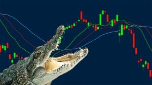 Bill William Alligator Indicator