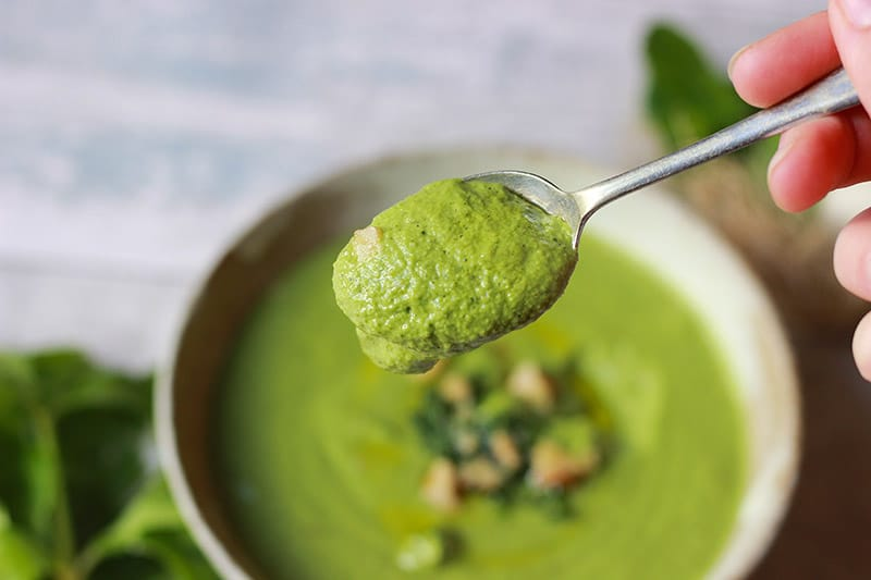 celery-pesto-spoonful