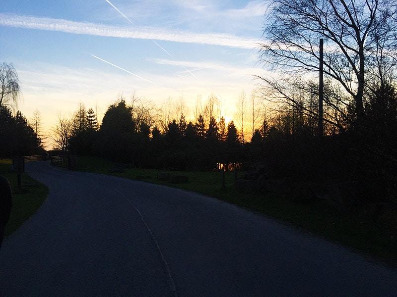 Spring evening walks