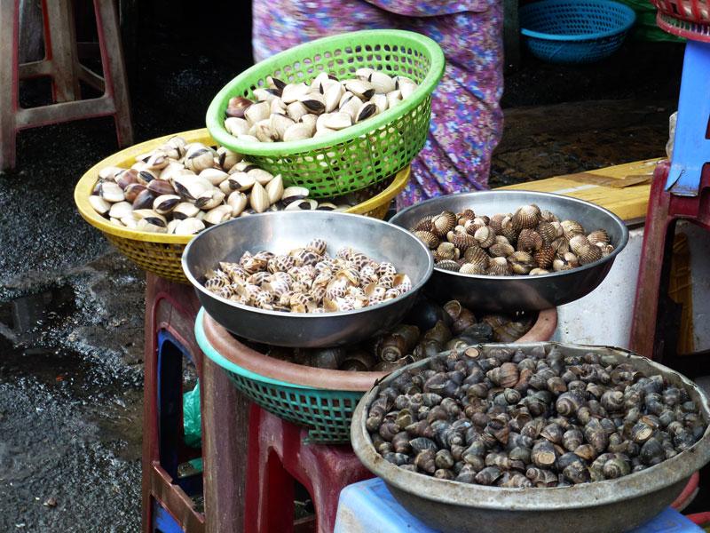 Vietnam shellfish at the market