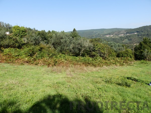 Land in central portugal
