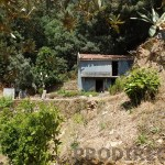 Small farm for sale in Góis - PD0136