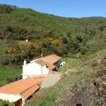 Dream farmhouse with 5 hectares - PD0149