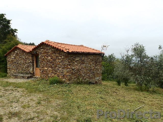 Property in Coja