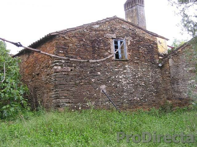 Property for sale in Tábua Portugal