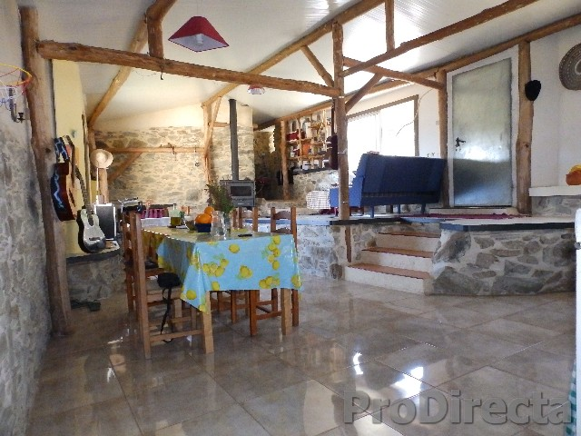Quinta in Gois for sale
