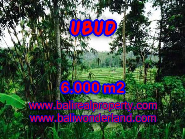 Outstanding Property in Bali for sale, land for sale in Ubud Bali – TJUB349