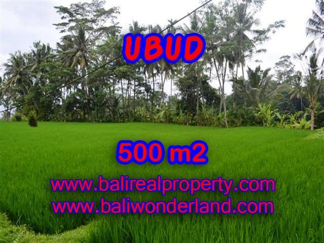 Land for sale in Bali, magnificent view Ubud Bali – TJUB364