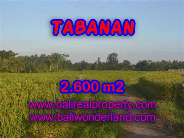 Amazing Land in Bali for sale in Tabanan Penebel Bali – TJTB129