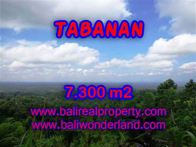 Land in Bali for sale, Stunning view in Tabanan Bali – TJTB123