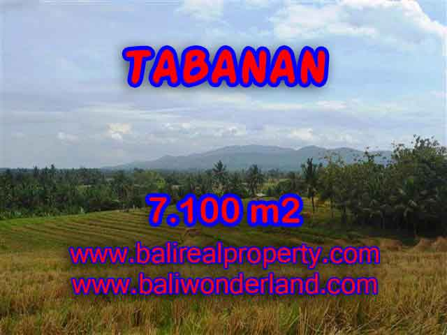 Stunning Land for sale in Bali, paddy fields, mountain and ocean view in Tabanan Bali - TJTB125