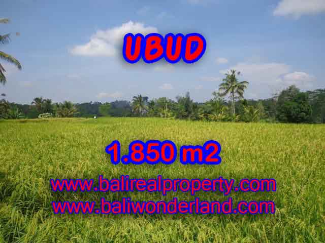 Exotic LAND FOR SALE IN UBUD Bali, Mountain and paddy view in Ubud Tegalalang– TJUB410