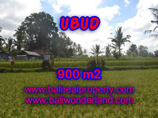 Land for sale in Ubud, Stunning view in Ubud Tegalalang Bali – TJUB412