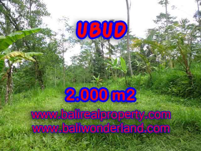 Land for sale in Ubud Bali, Magnificent view in Ubud Tegalalang – TJUB406