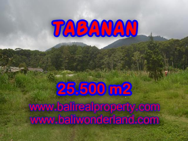 Exotic Property for sale in Bali, LAND FOR SALE IN TABANAN Bali – TJTB085