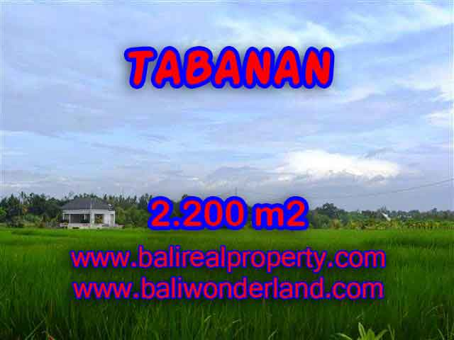 Land for sale in Tabanan, Fantastic view in Tabanan kediri Bali – TJTB097