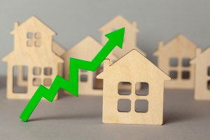 Capital Economics: House prices to rise by 5% next year