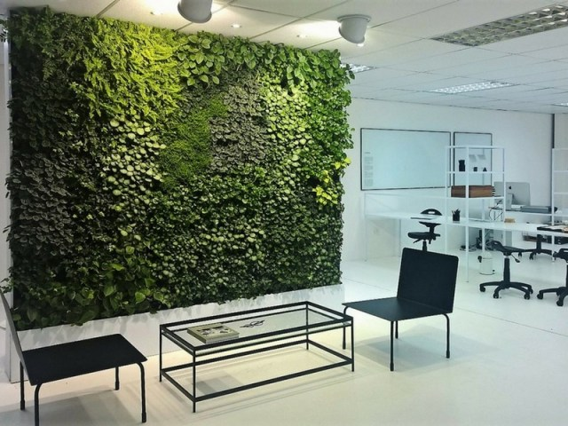 Office Garden Wall That Reduces Noise In Trendy Office
