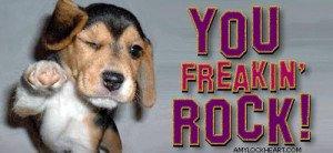 you-rock