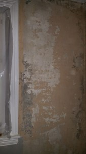 Plaster removal required to expose mold contamination.