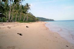 Large beachfront land for sale, Bang Por, Koh Samui