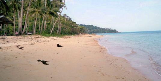 Large beachfront land for sale, Bang Por, Koh Samui