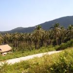 Bargain Land Namuang Koh Samui