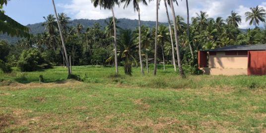 Land plots in established central location in Lamai, Koh Samui