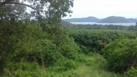 7 Rai at Sea View Land Thong Kruut Koh Samui