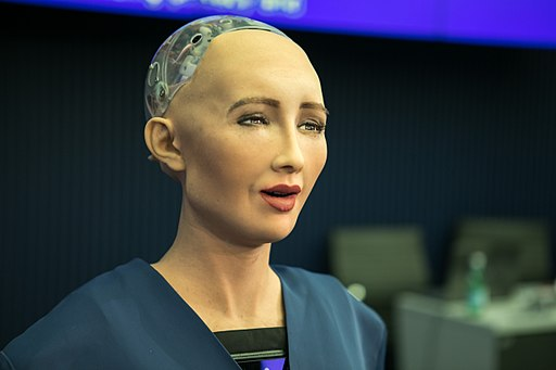 Colored photograph of humanoid robot with facial features and wires and computer chips in place of brain. No hair. Citizenship for robots.