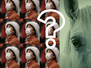 Colored photomontage of 9 identical photos of Chinese woman with face mask, juxtaposed with horse's head colored like a corpse. Superimposed is a large white outlined question mark. Prophetic Pestilence.