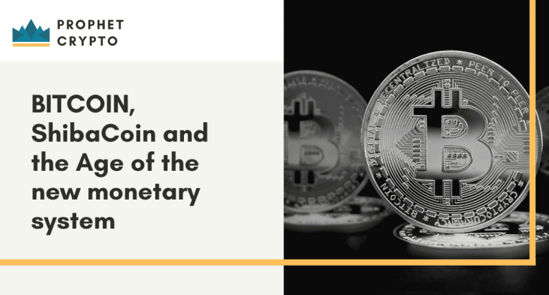 BITCOIN, ShibaCoin and the Age of the new monetary system