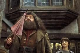 Гарри Поттер и философский камень на польском, глава 5 часть 1