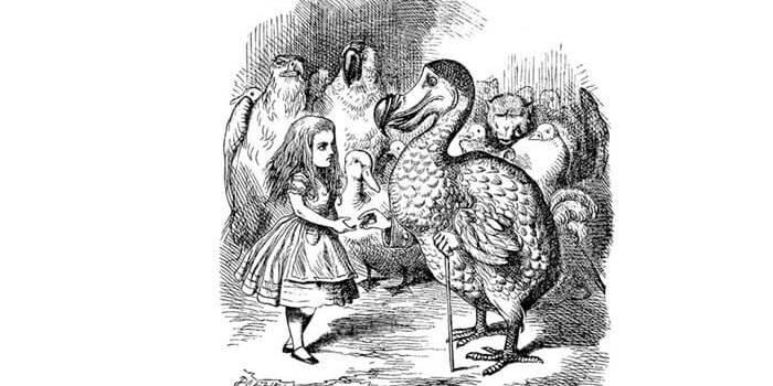 Алиса в стране чудес на польском языке, чтение 3 главы + разбор
