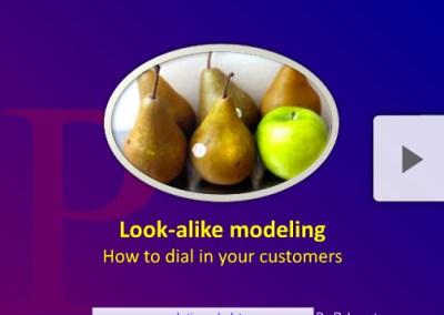 Facebook and Look-Alike Modeling: A Short Primer