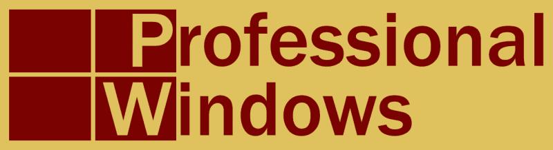 Professional Windows logo