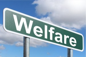 Pros and Cons of welfare
