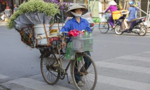 Vendor selling flowers Vietnam