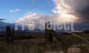 Closed farm gate OFS | ProSelect-images