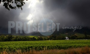 Constantia Wine Estate storm | ProSelect-images