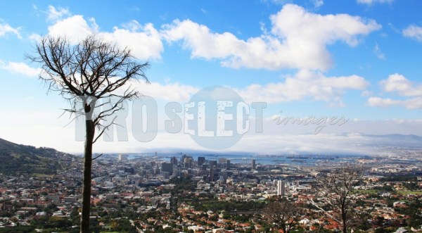 De Waal Drive View | ProSelect-images