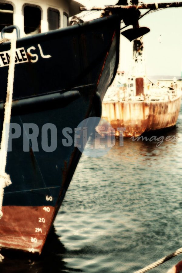 Docked Hout Bay Harbor | ProSelect-images